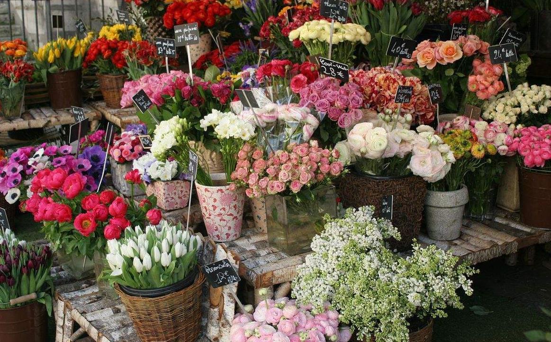总体上来说,大部分花店的加盟费在1万到5万,但有些大型花卉公司,比如图片